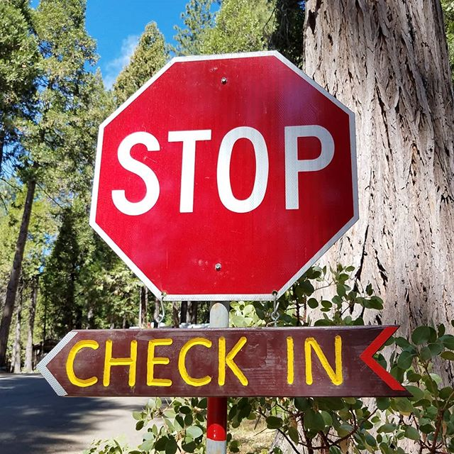 """If you haven't visited Golden Pines for a while, maybe it's time you """"checked in"""" on us!"""