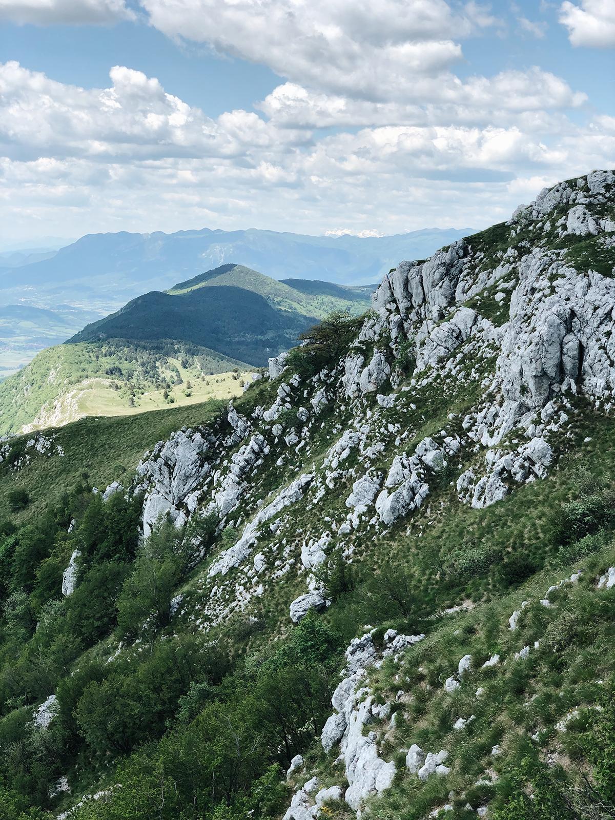 ohranimo-naravo-čisto-in-neokrnjeno-lili-in-roza-blog-skrb-za-okolje-gozd-5.JPG