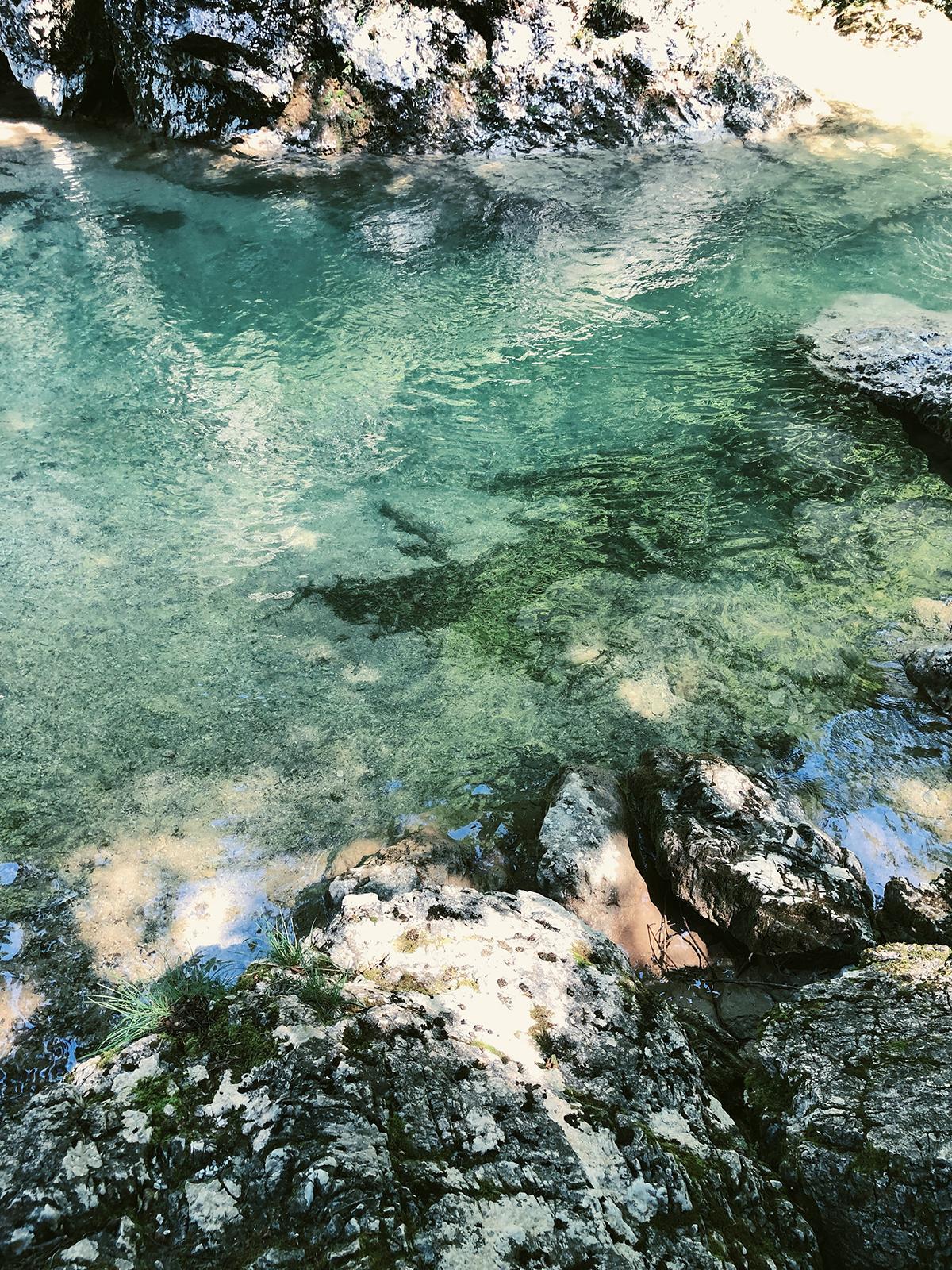 ohranimo-naravo-čisto-in-neokrnjeno-lili-in-roza-blog-skrb-za-okolje-reke-2.JPG