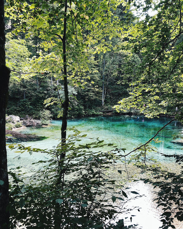 ohranimo-naravo-čisto-in-neokrnjeno-lili-in-roza-blog-skrb-za-okolje-reke-5.JPG