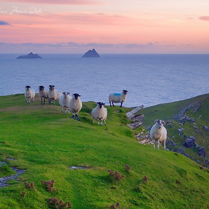 Undiscovered Ireland -
