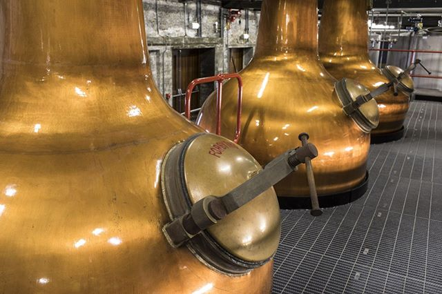 Limited number of 6 and 8 day tours in 2020 on sale now ! ⠀ ⠀ 👉 https://buff.ly/31FQkPh ☘️⠀ ⠀ Click the link above and book NOW to avoid disappointment 😭⠀ ⠀ 🥃 Rare Whiskey⠀ 🌄 Amazing Scenery⠀ 🏭 Ancient Distilleries⠀ ⠀ #whisky #whiskey #whiskeytour #ireland #visitireland #whiskylife #whiskeyporn #whiskygram #visitireland #discoverireland #whiskey13usiness #Scotch #bourbon #whiskyUSA #CanadianWhisky #whiskySociety #Jameson #Powers #Redbreast #Teelings #RareWhiskey #RareWhisky #JackDaniels