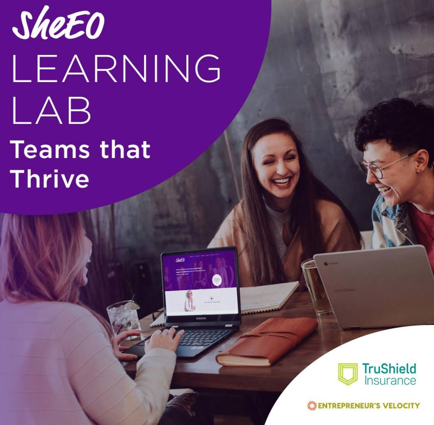 learninglab-sheeo.jpg