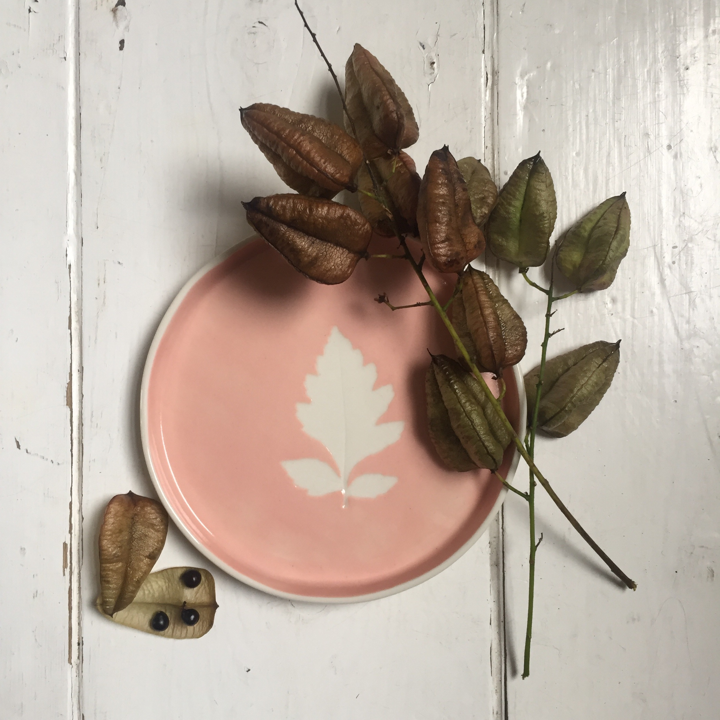 Coral Pink Leaf Dish  Made using real leaves and coloured slips, each piece is unique. 14 cm diameter.