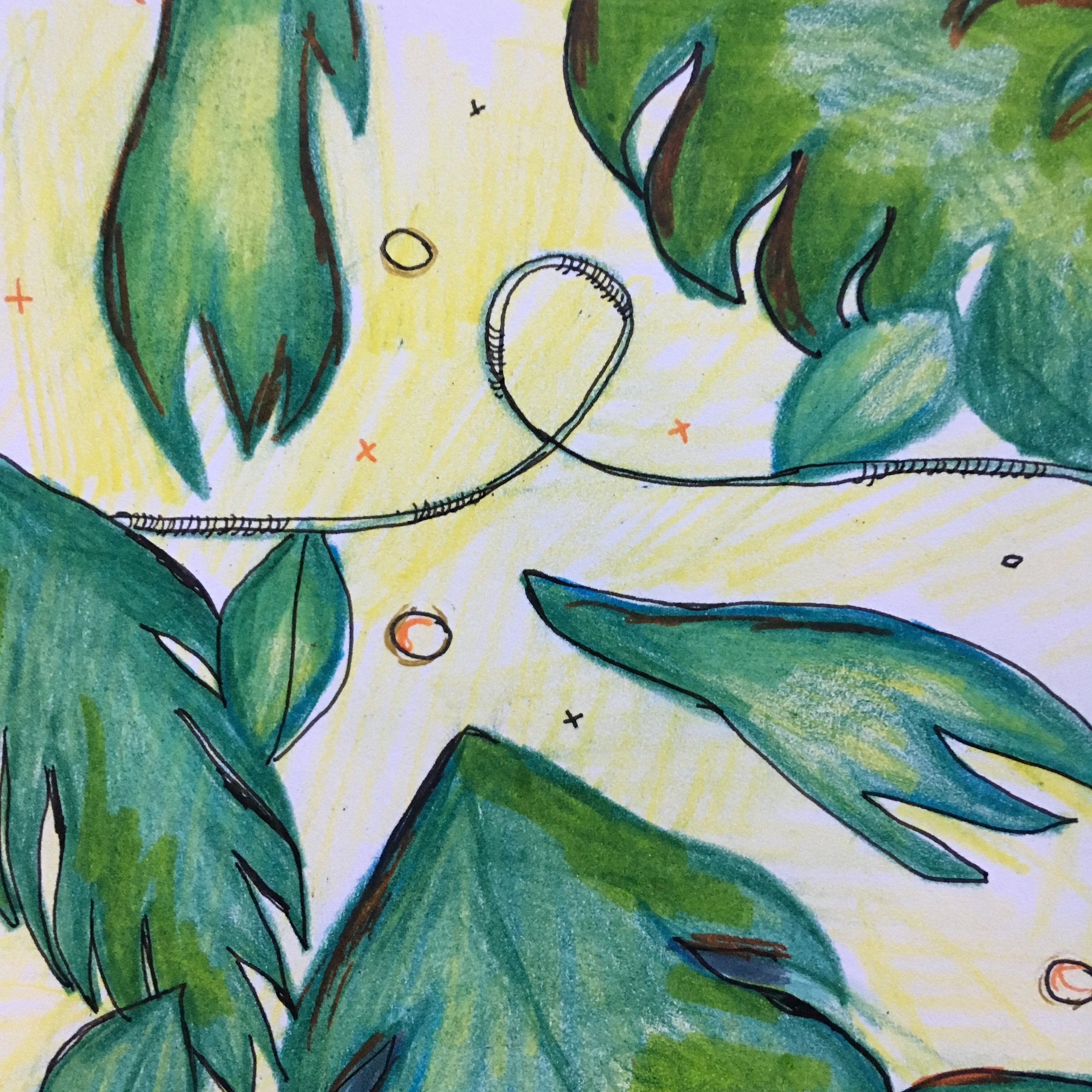 Abstract fern leaves - Color pencil and ink on Moleskine paper