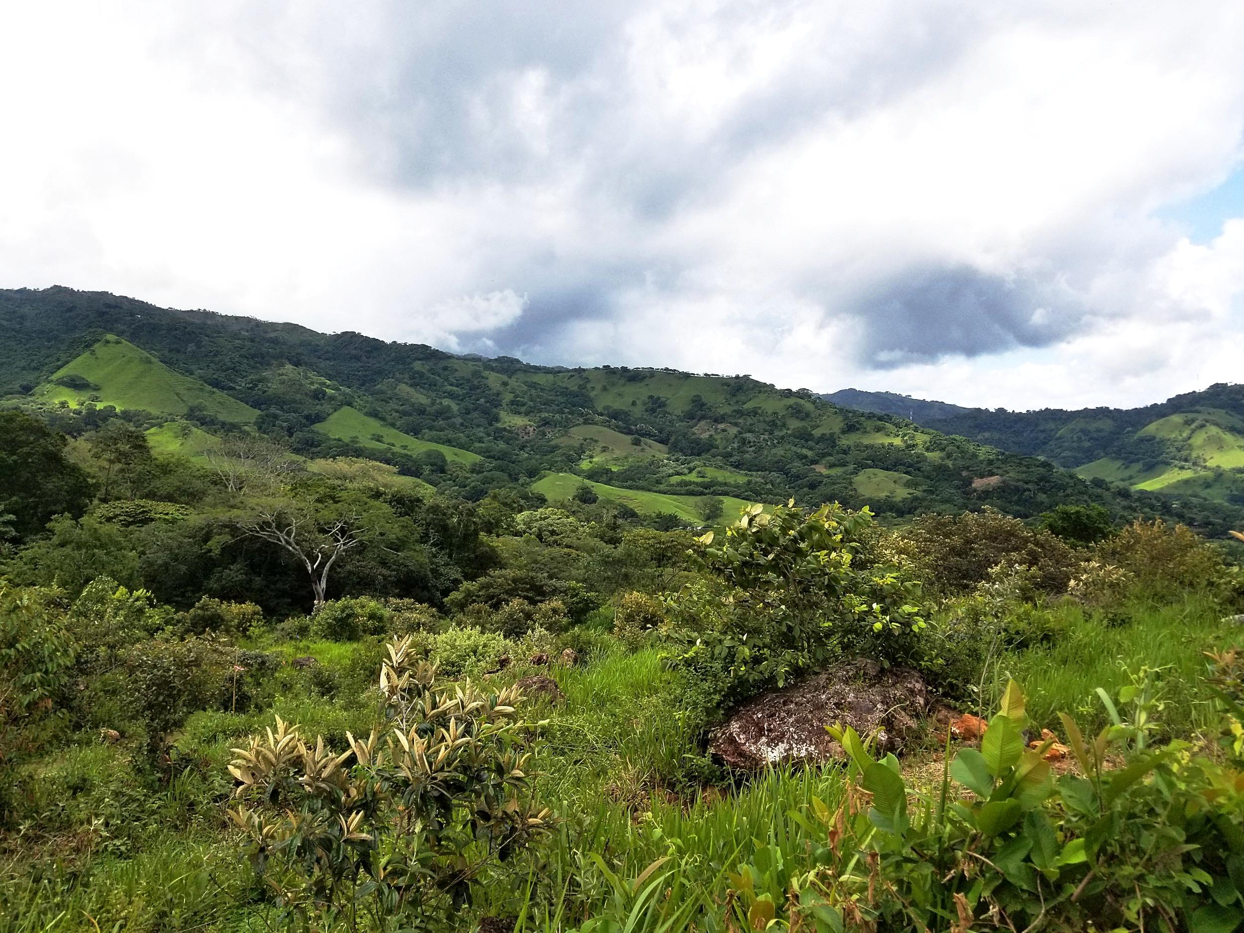 Alegria: San Mateo, Costa Rica