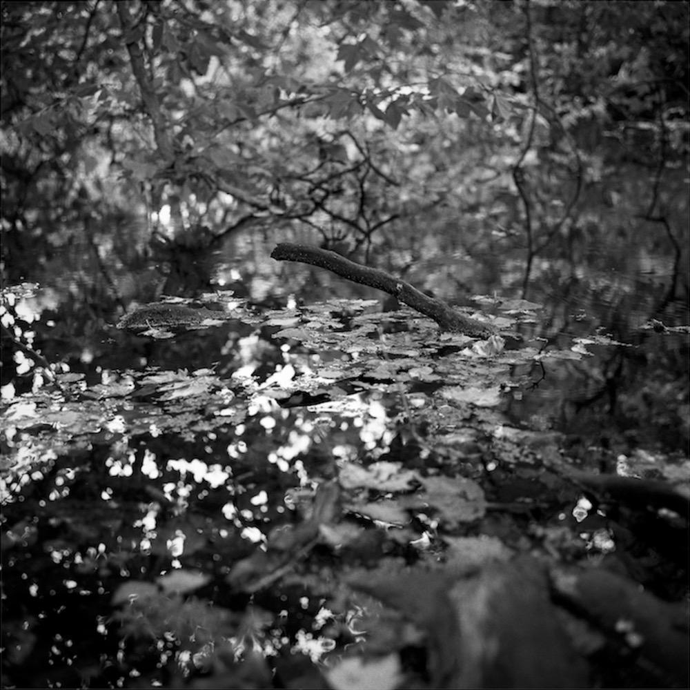 yesterday autumn came_06.jpg