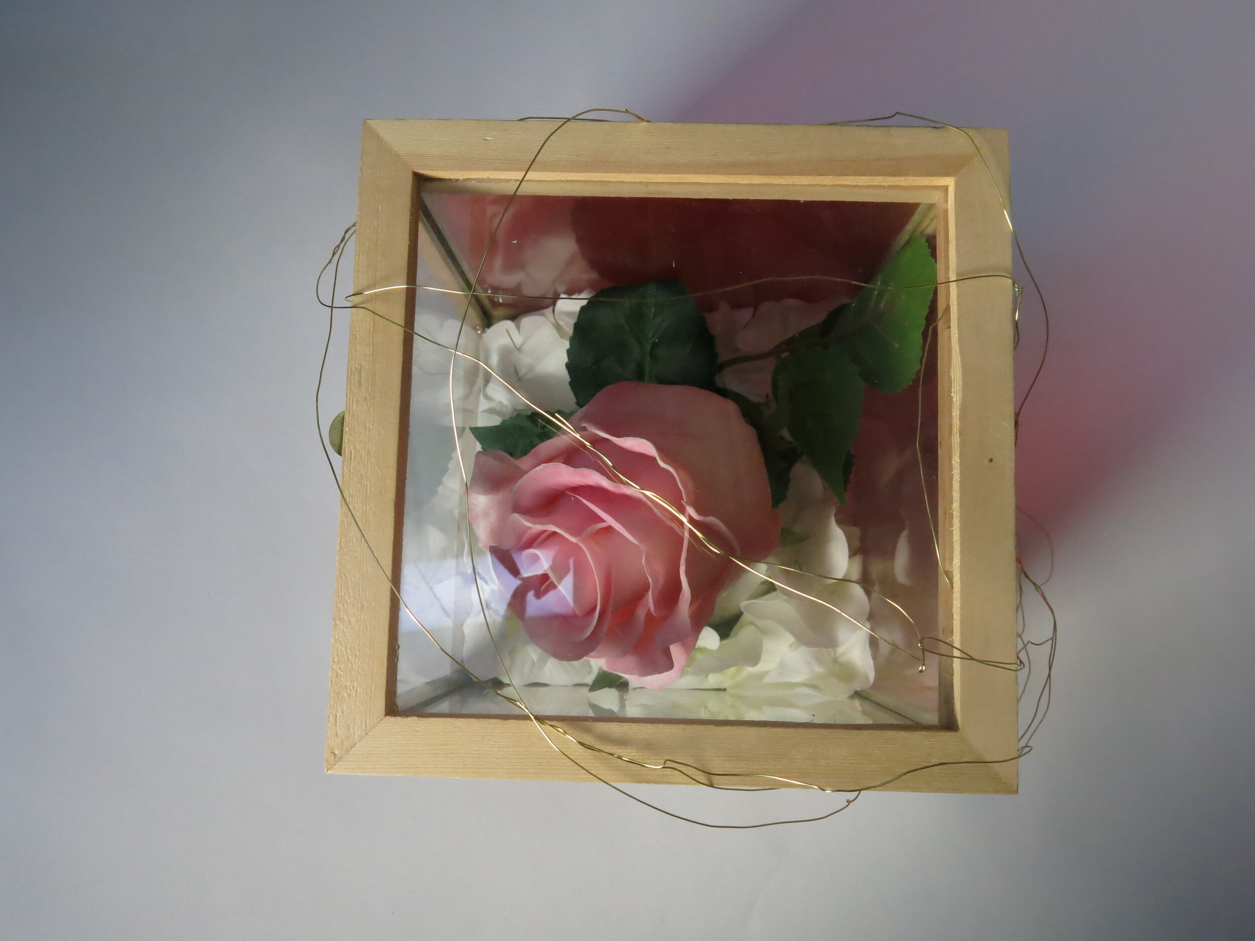 The pink rose is a metaphor to symbolize the bunker people live in, where they believed is the safe place distant from the outside world (I.e. their comfort zone).
