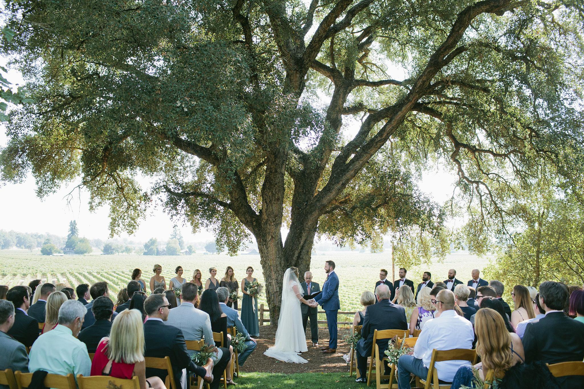 Healdsburg-Summer-Wedding-33.JPG