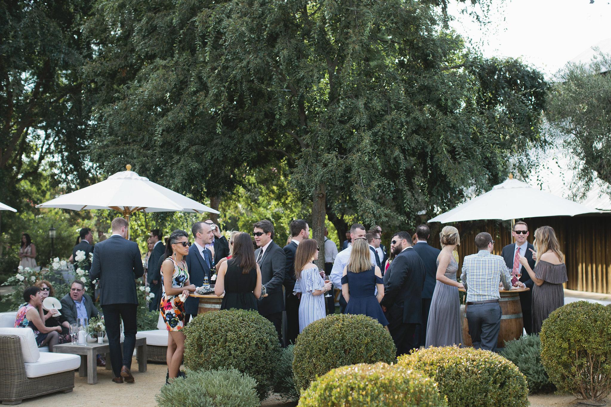 Healdsburg-Summer-Wedding-52.JPG