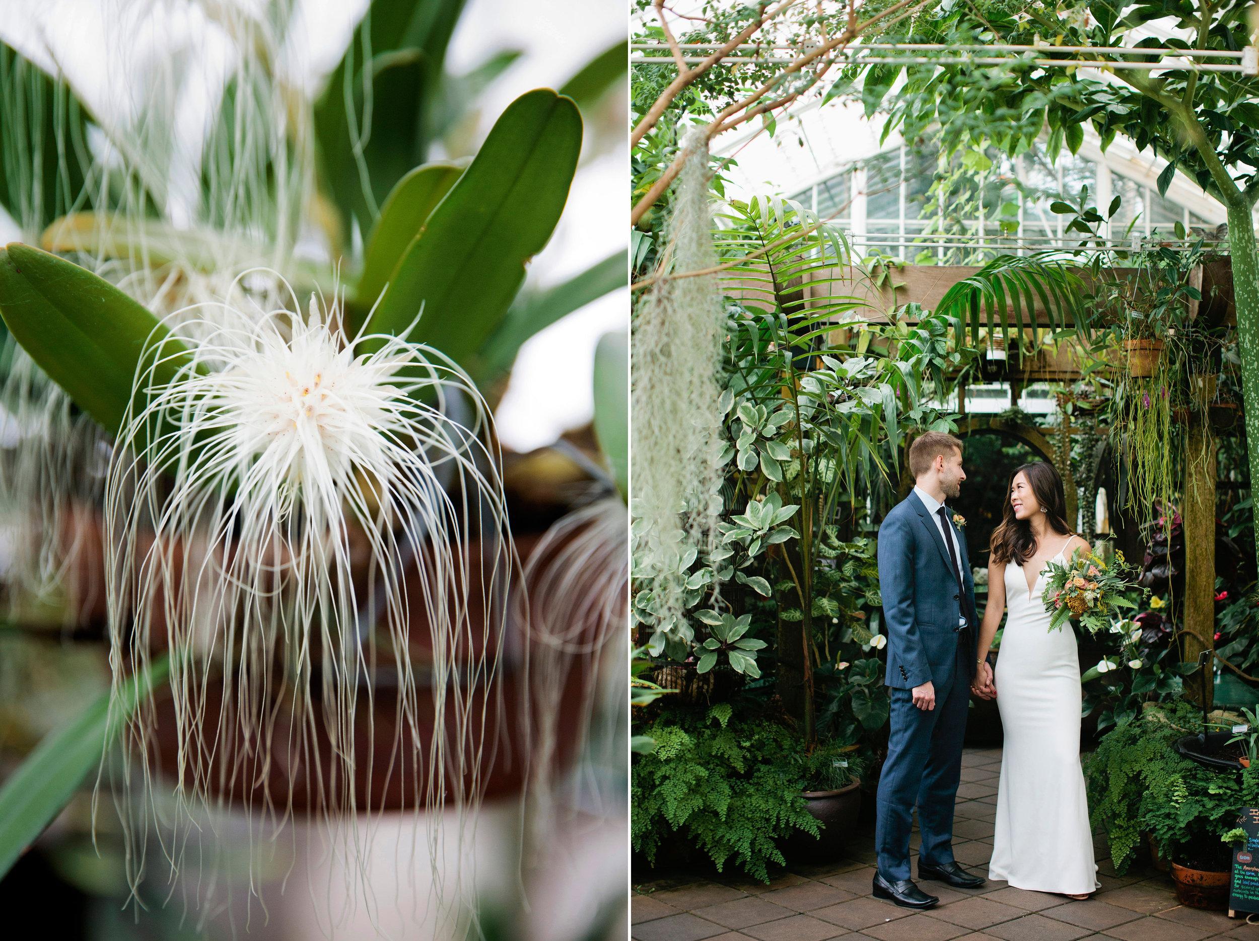Conservatory-of-Flowers-Wedding-10 copy.jpg