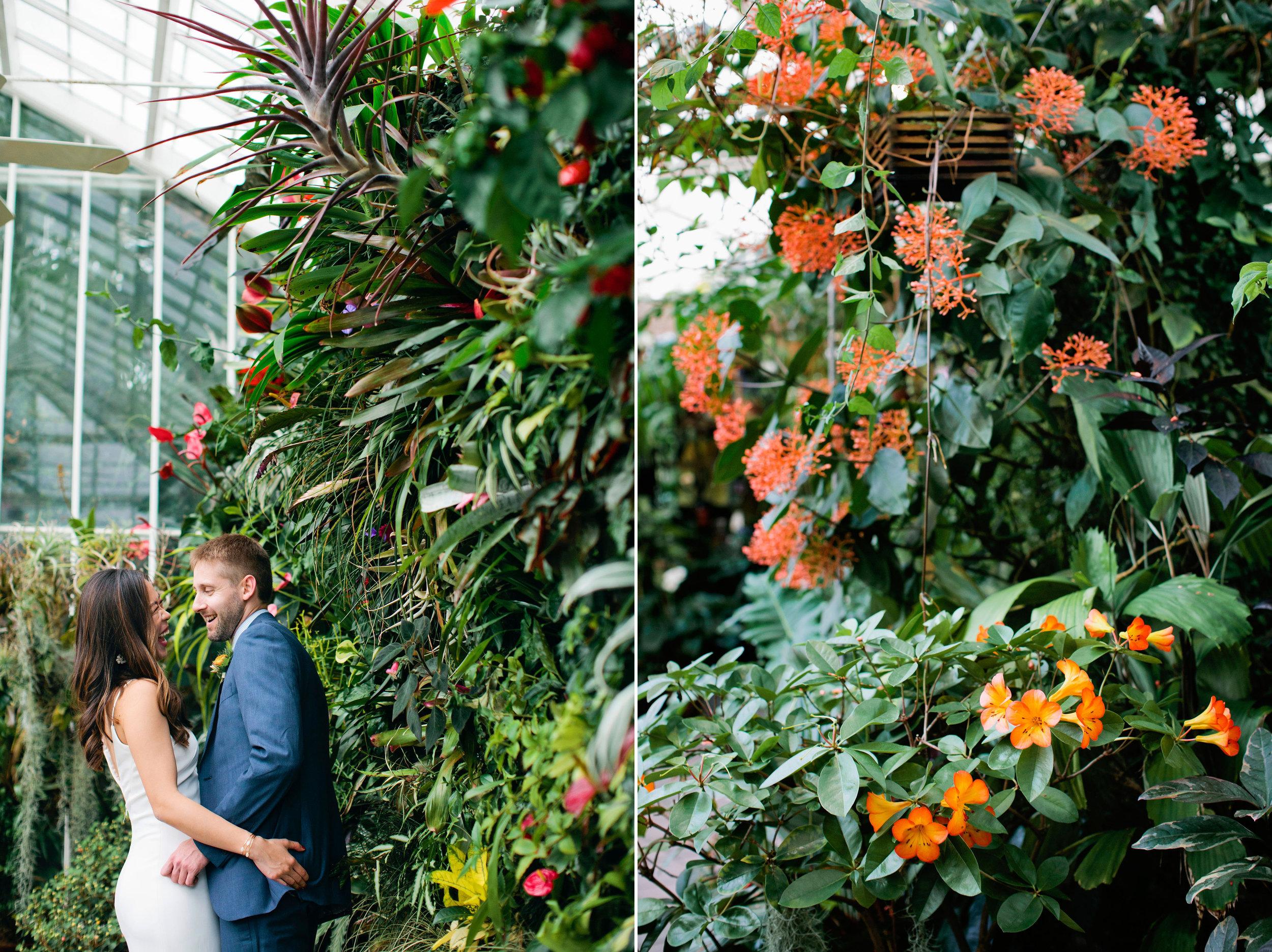 Conservatory-of-Flowers-Wedding-15 copy.jpg