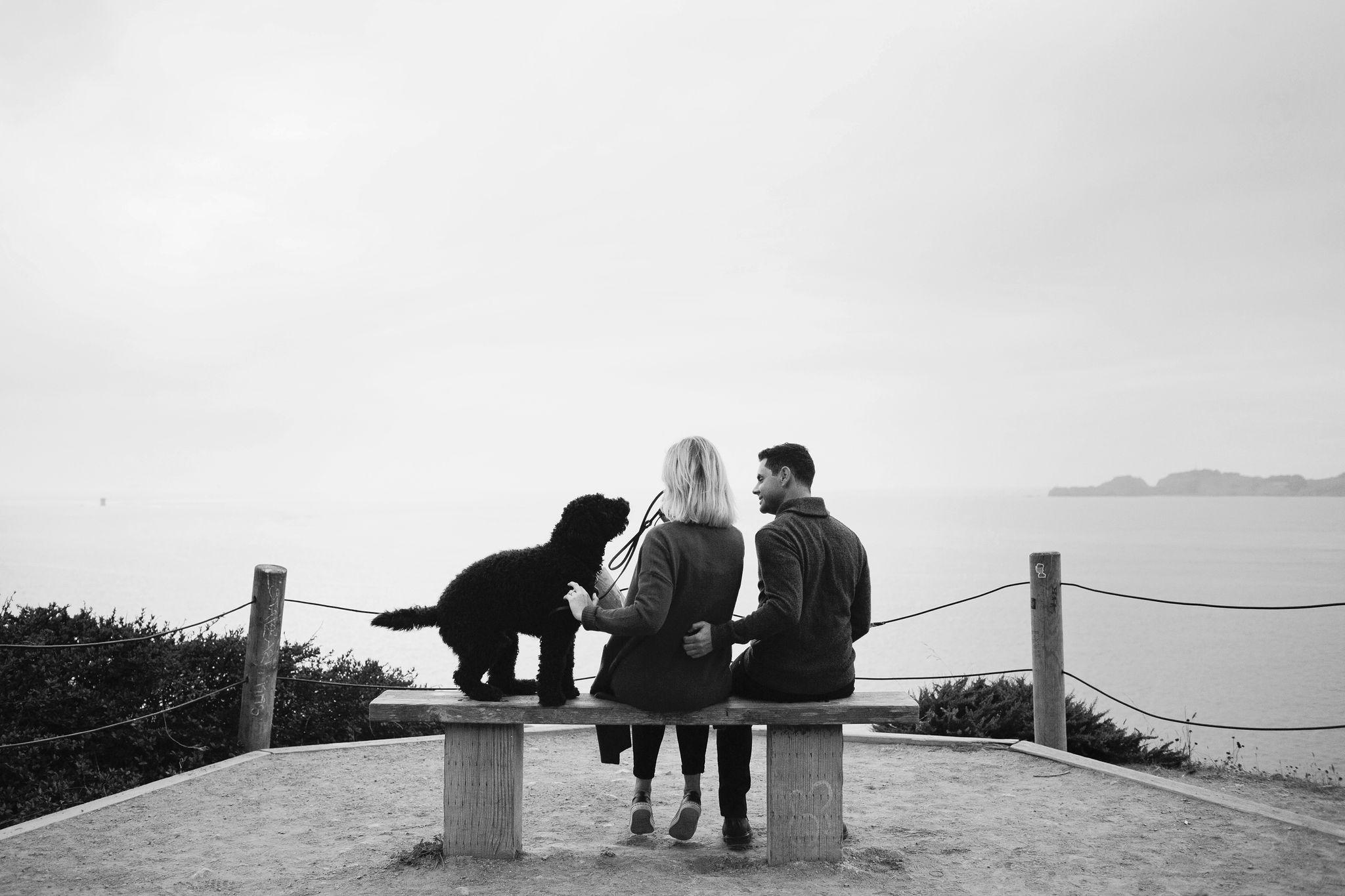 San-Francisco-Presidio-Engagement-16.JPG