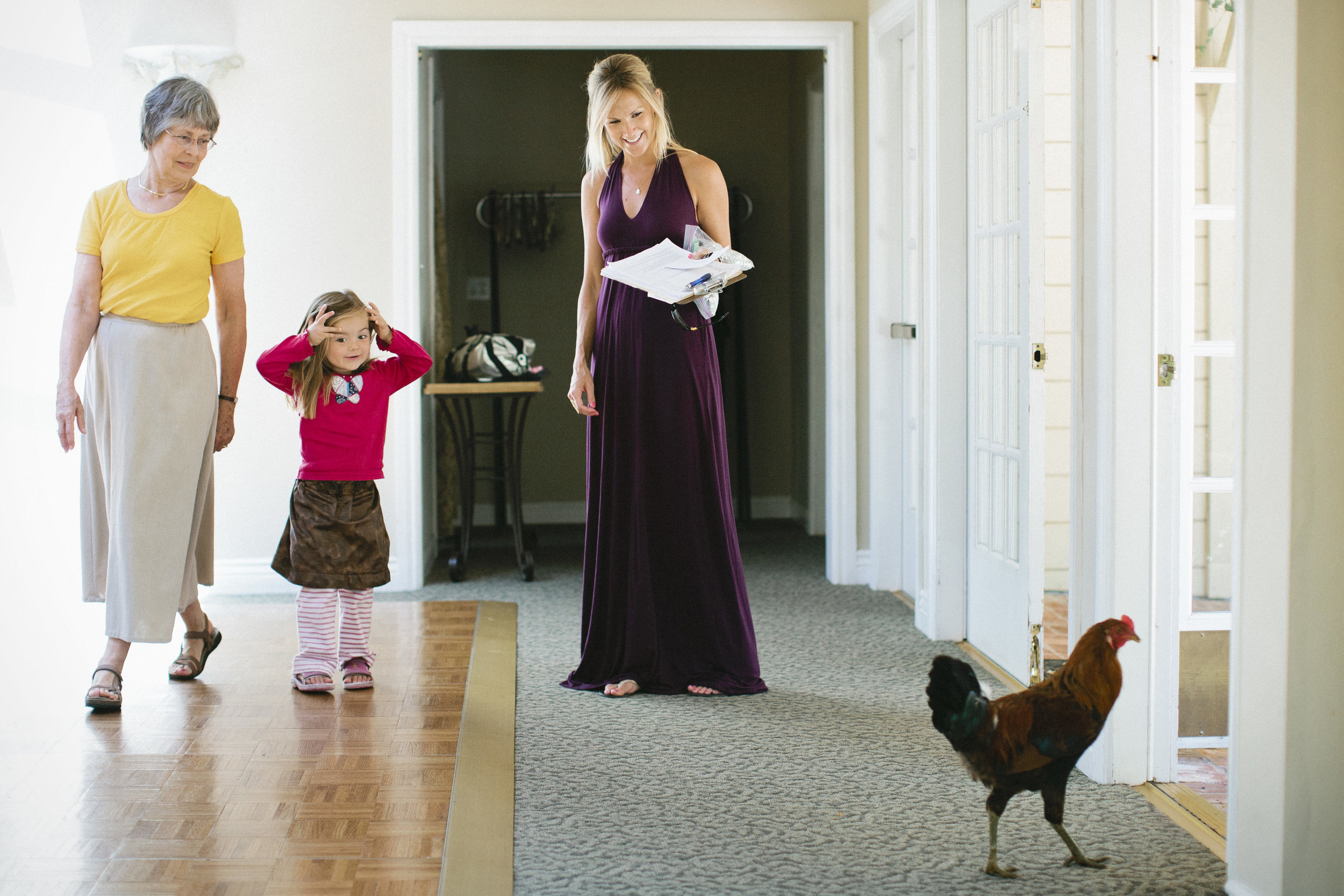A rooster's surprise visit to a getting ready area made for a fun moment.