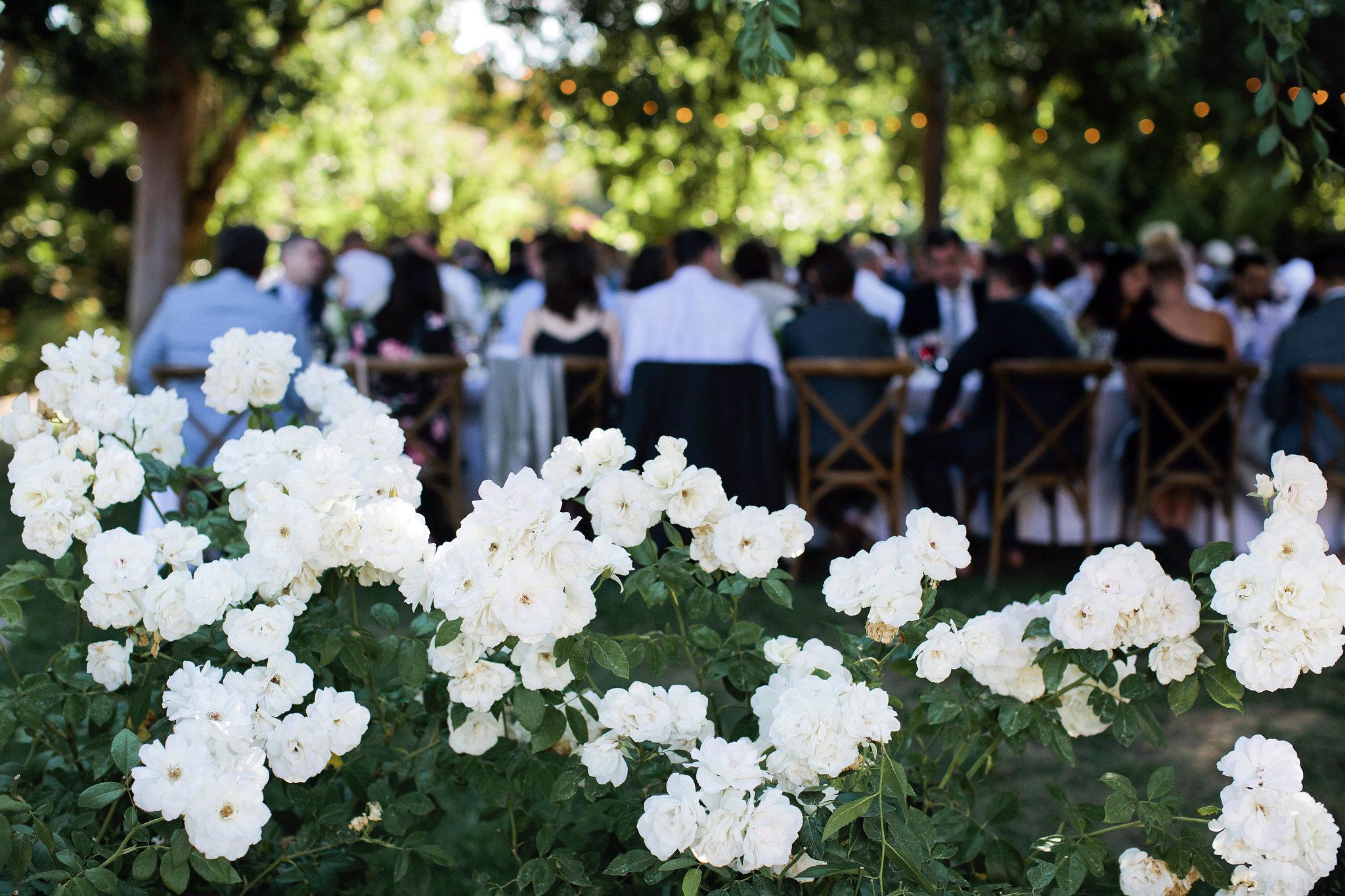 Ru's-Farm-Summer-Wedding-058.JPG