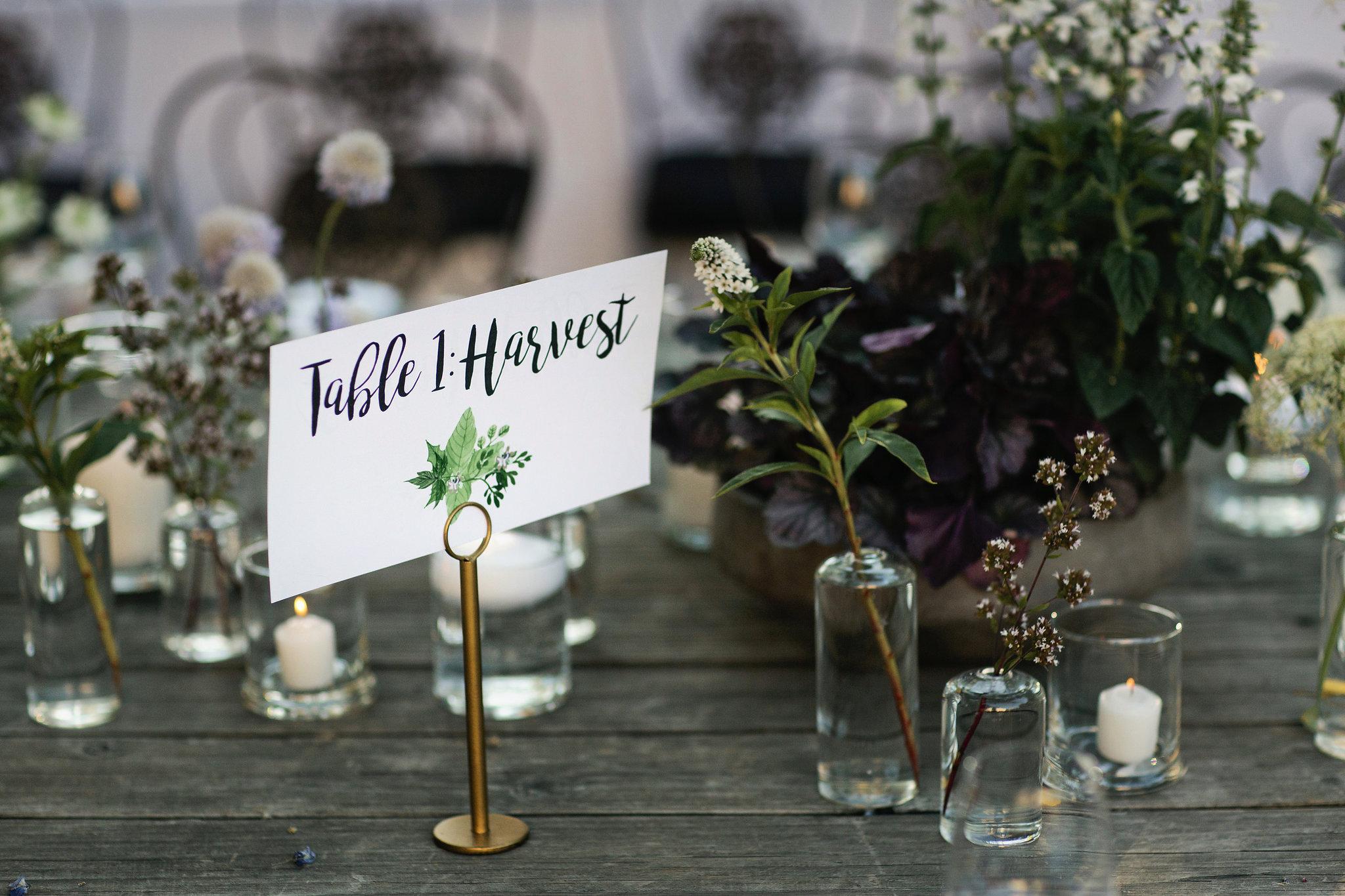 Barndiva-Healdsburg-Wedding-052.JPG