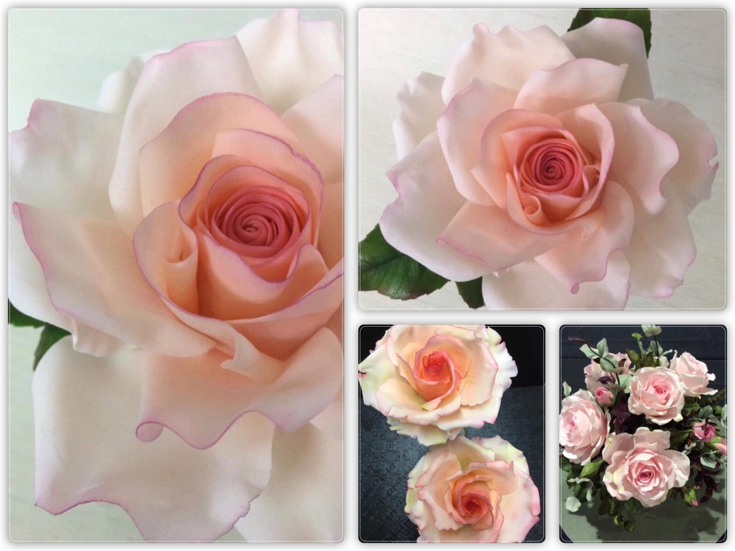 RoseCollage.jpg