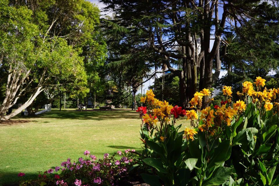 Auckland3.jpg