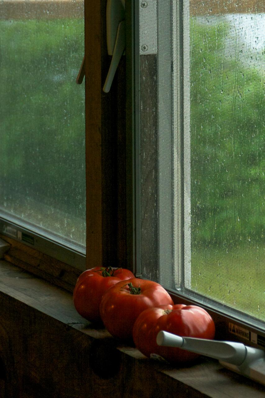 6Cape_Cod_Tomatoes.jpg
