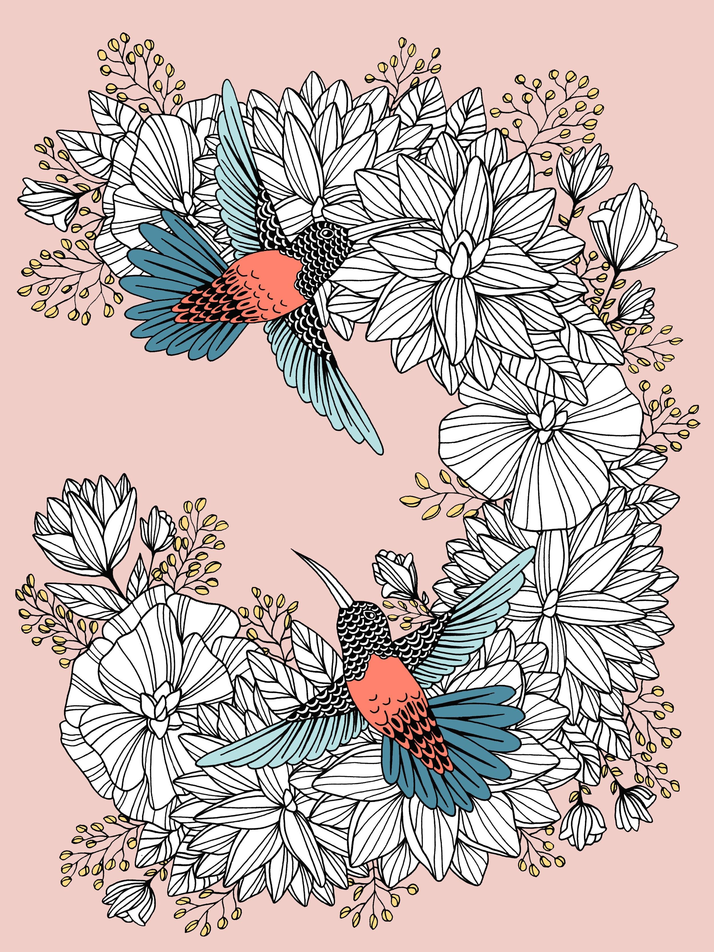 Hummingbirds_color.jpg