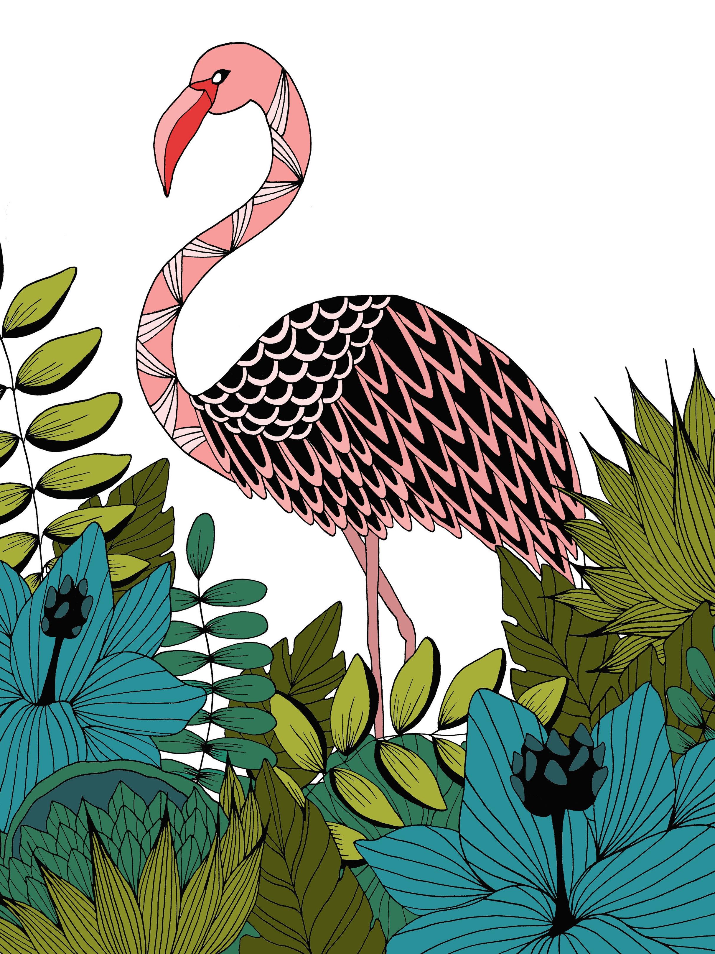 Flamingo_Color.jpg