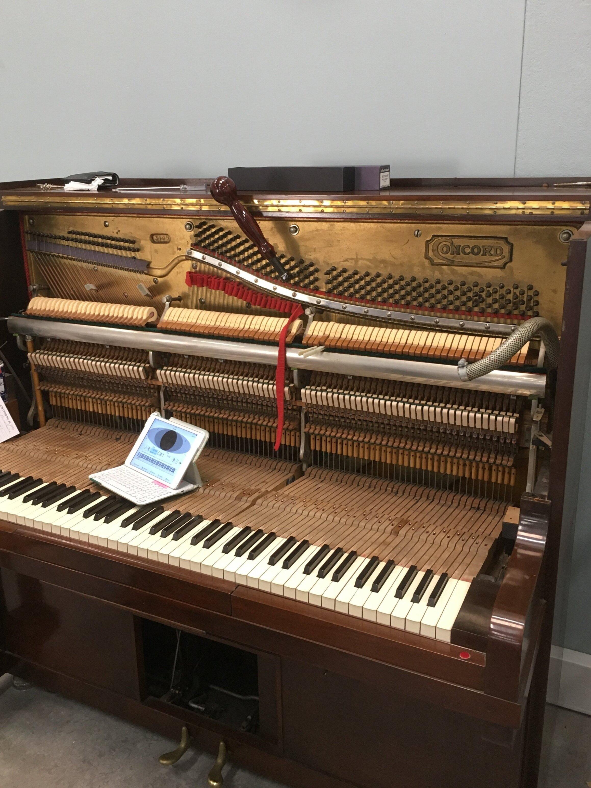 Piano+Tuning+1.+October+2019.jpg