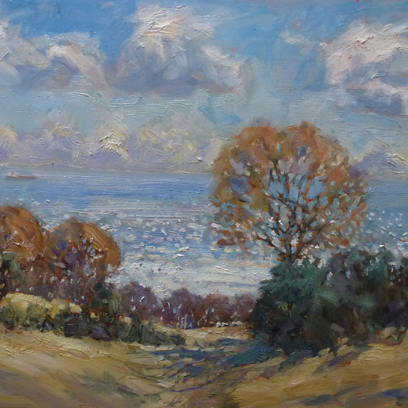 Christine Pybus   Christine is an artist working in both oils and watercolours, with a particular love of painting plein-air seascapes, landscapes and snow scenes. Whilst home is Whitby on the North Yorkshire coast, she travels extensively to work, including to New Zealand, Australia and throughout Europe.