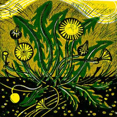 Susan Wheeler   Susan Wheeler is an Oxfordshire printmaker who makes linocuts from the inspiration she derives from the landscape, botany and buildings of Oxford and the surrounding countryside. She has exhibited nationwide including the Biscuit Factory, Newcastle upon Tyne, Radley College and at the Oxford Printmakers.