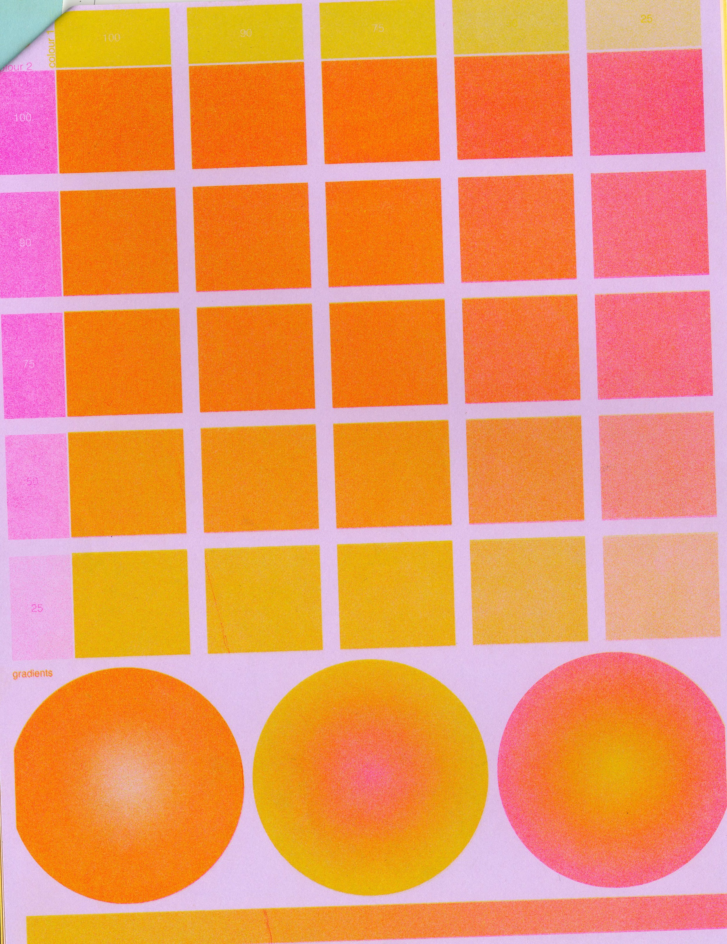 riso two colour007.jpg