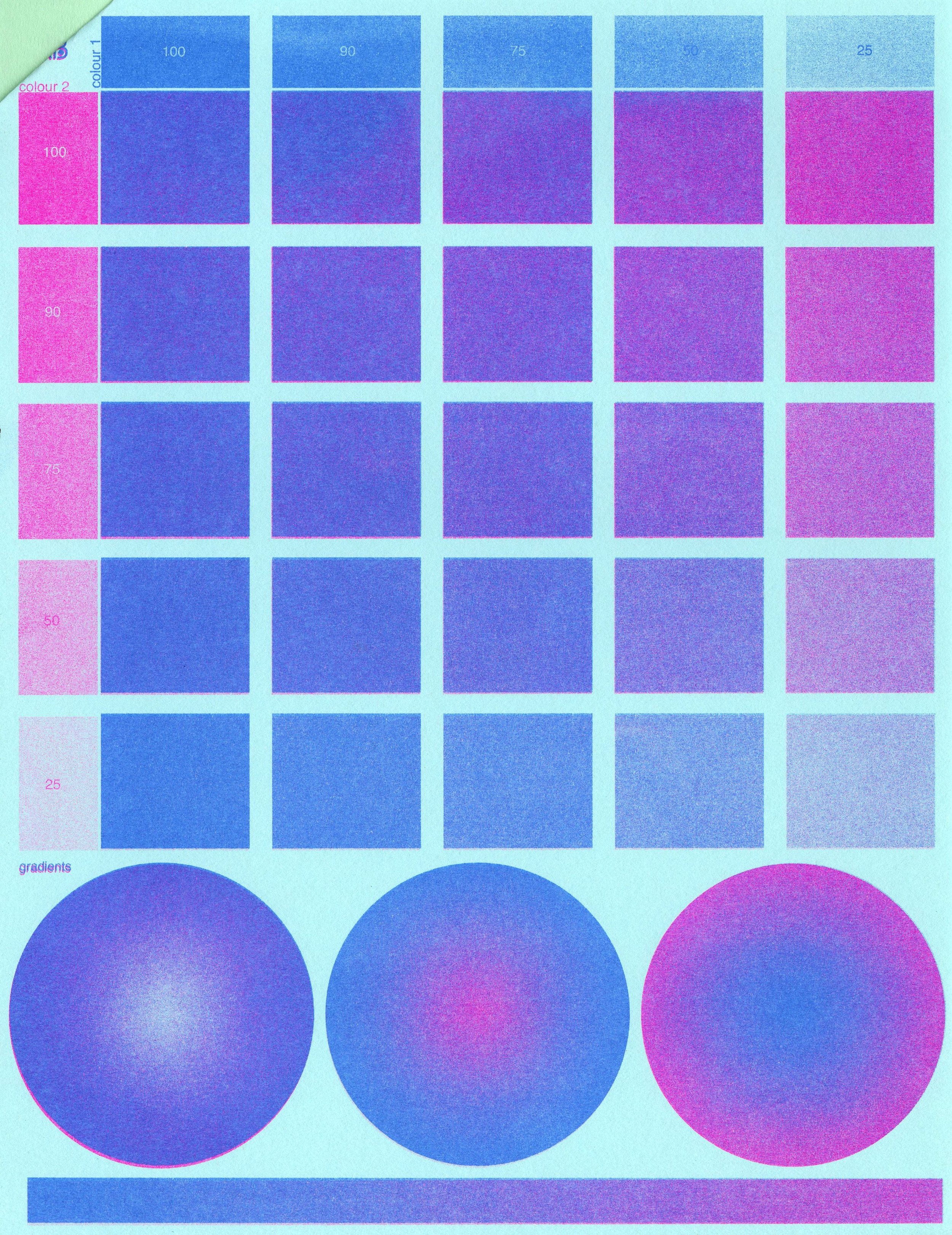 riso two colour004.jpg