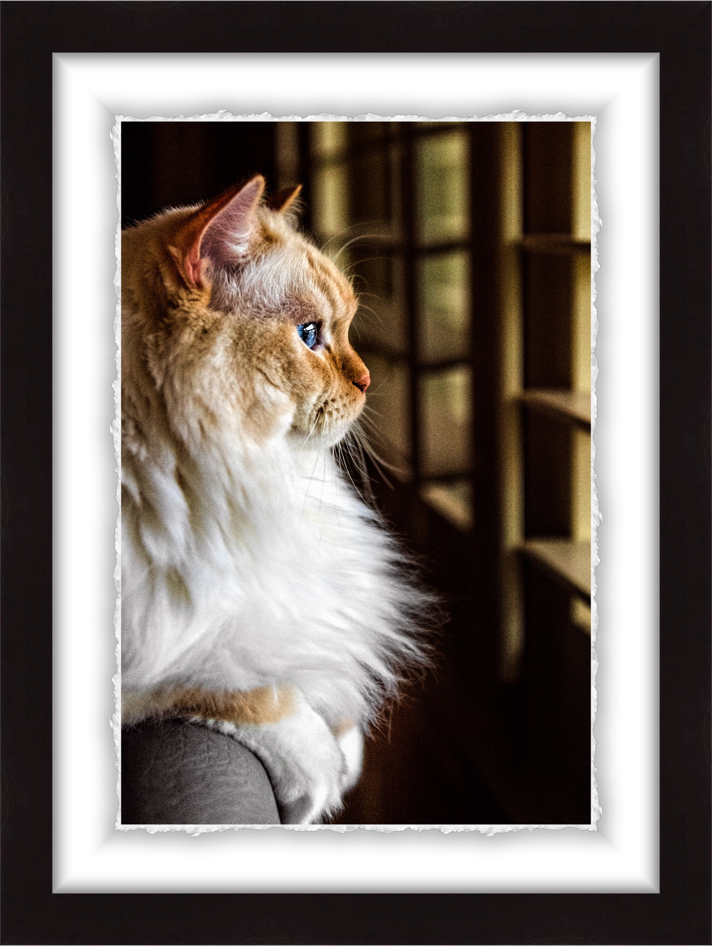 Wall Art: A distinctive watercolor print with a deckled edge in photographic acrylic glaze. This product is as stunning as this feline!