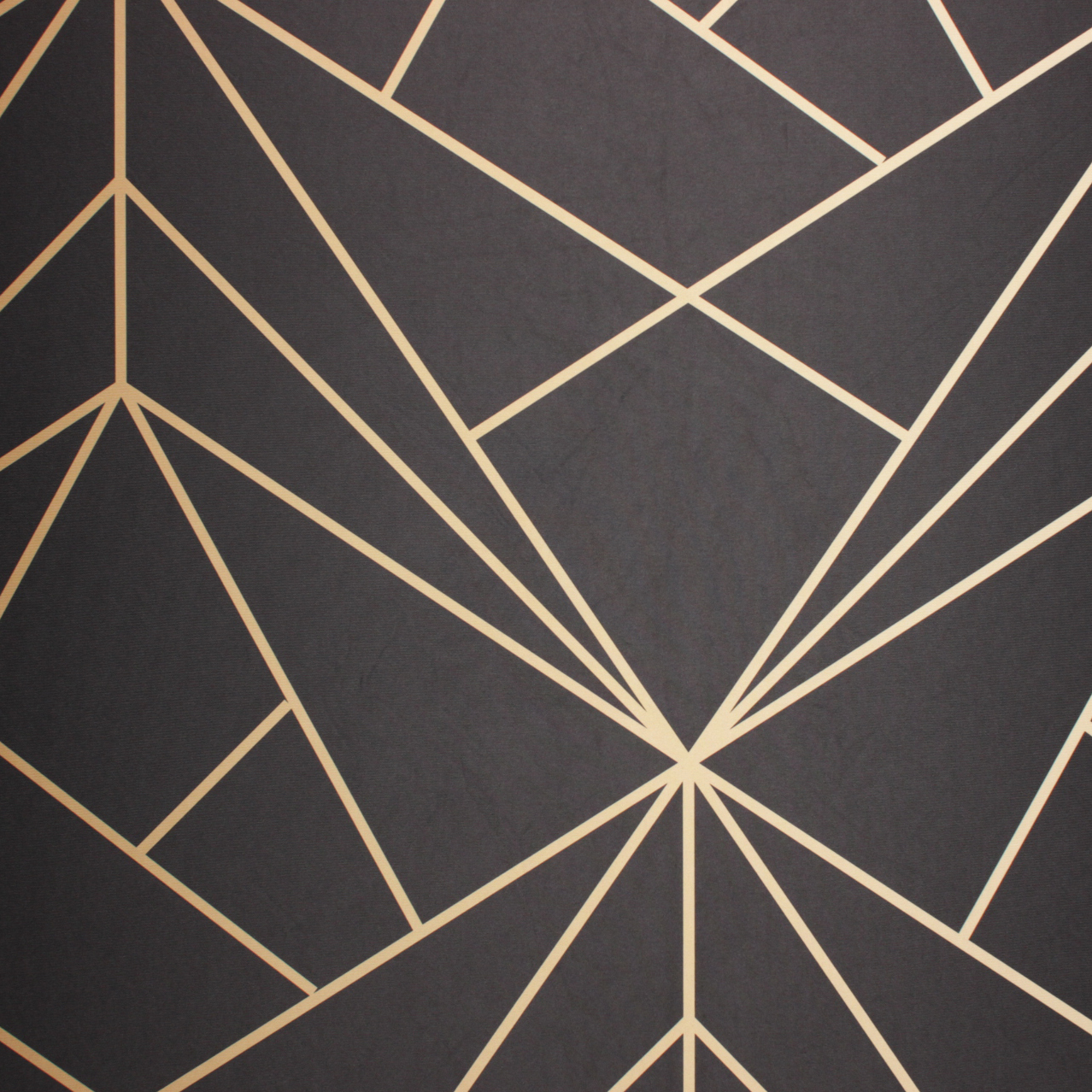 Black Geometric - This bold and modern backdrop turns heads. Its a showstopper for sure!