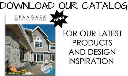 DOWNLOAD OUR CATALOG 2019.jpg