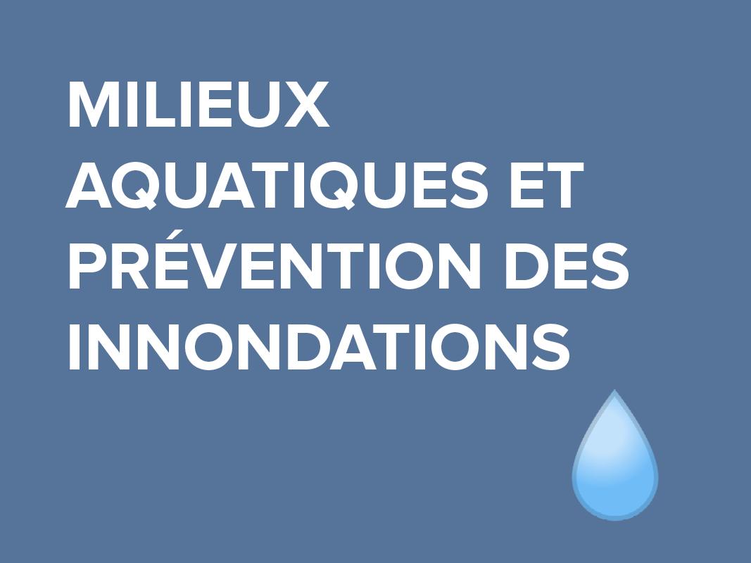 milieux-aquatiques-innondations.png