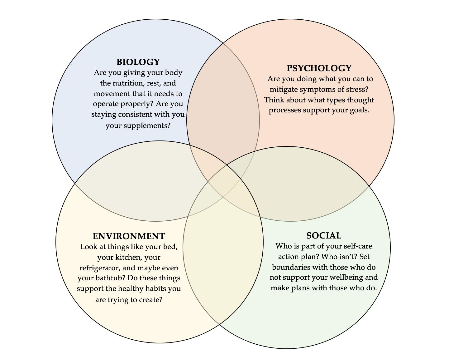 biopsychosocial_model_p4.png