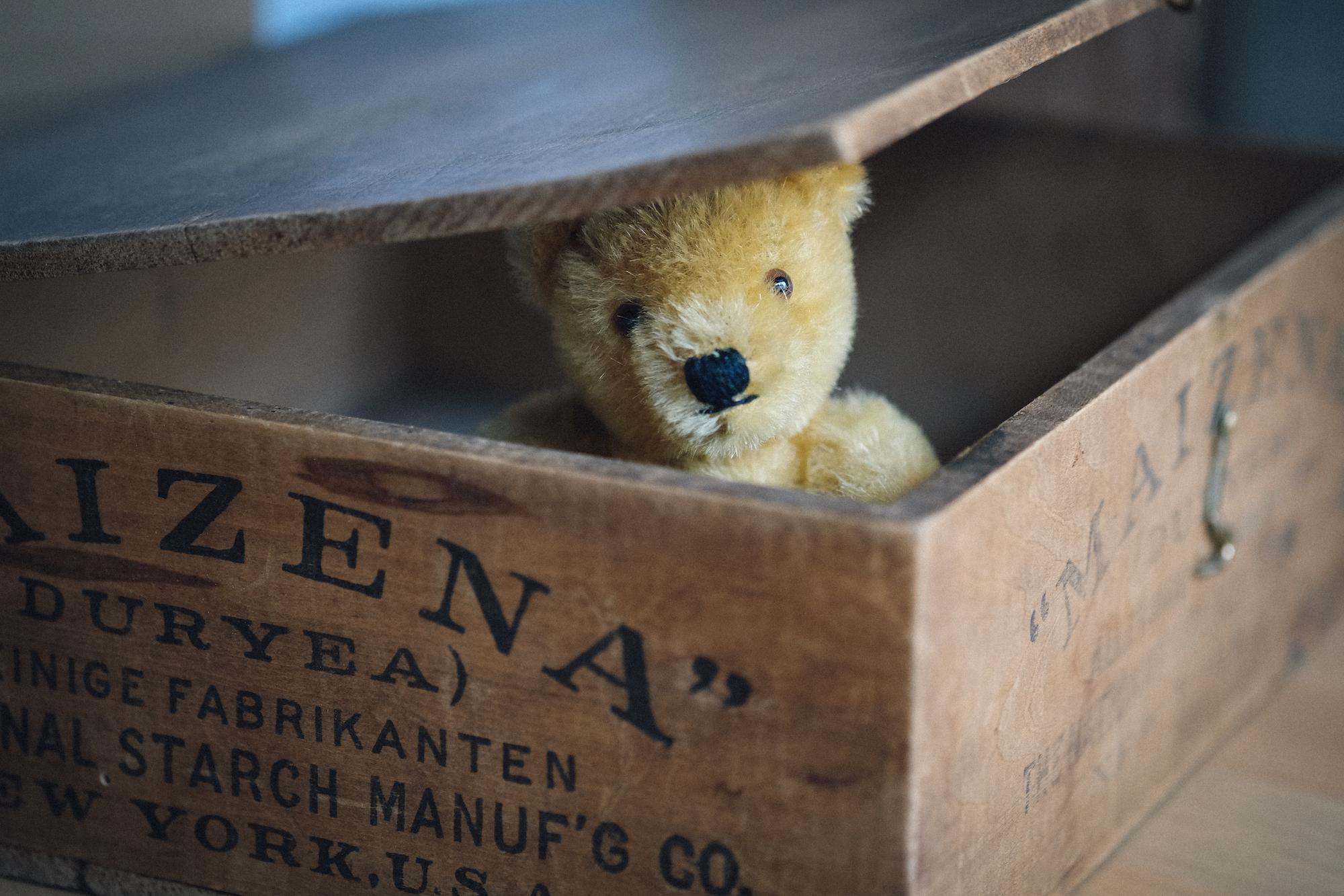 Bei eBay sehr beliebt: Steiff-Teddys und Plüschtiere (Foto:  Oliver Symens )