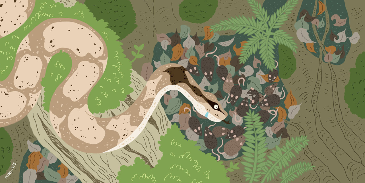MINI-SYS.COM by S Y S illustration 6 my hungry hungry tummy spread 5 textless.jpg