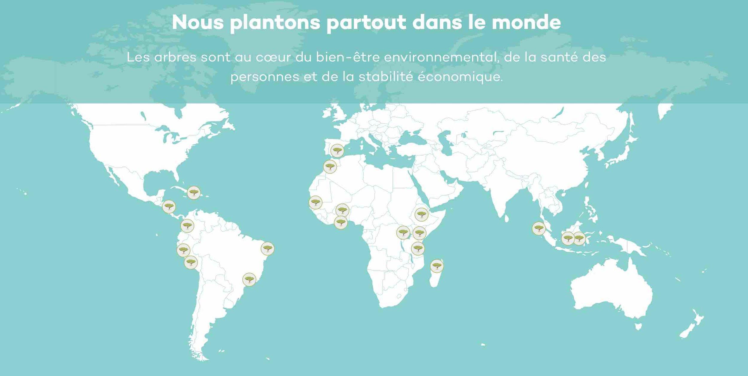Ecosia_reforestation_moteur_de_recherche_green