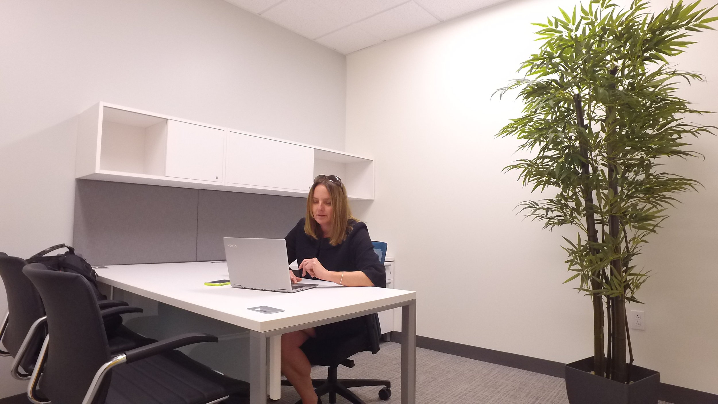 DJI_0212 Kristin office work.JPG