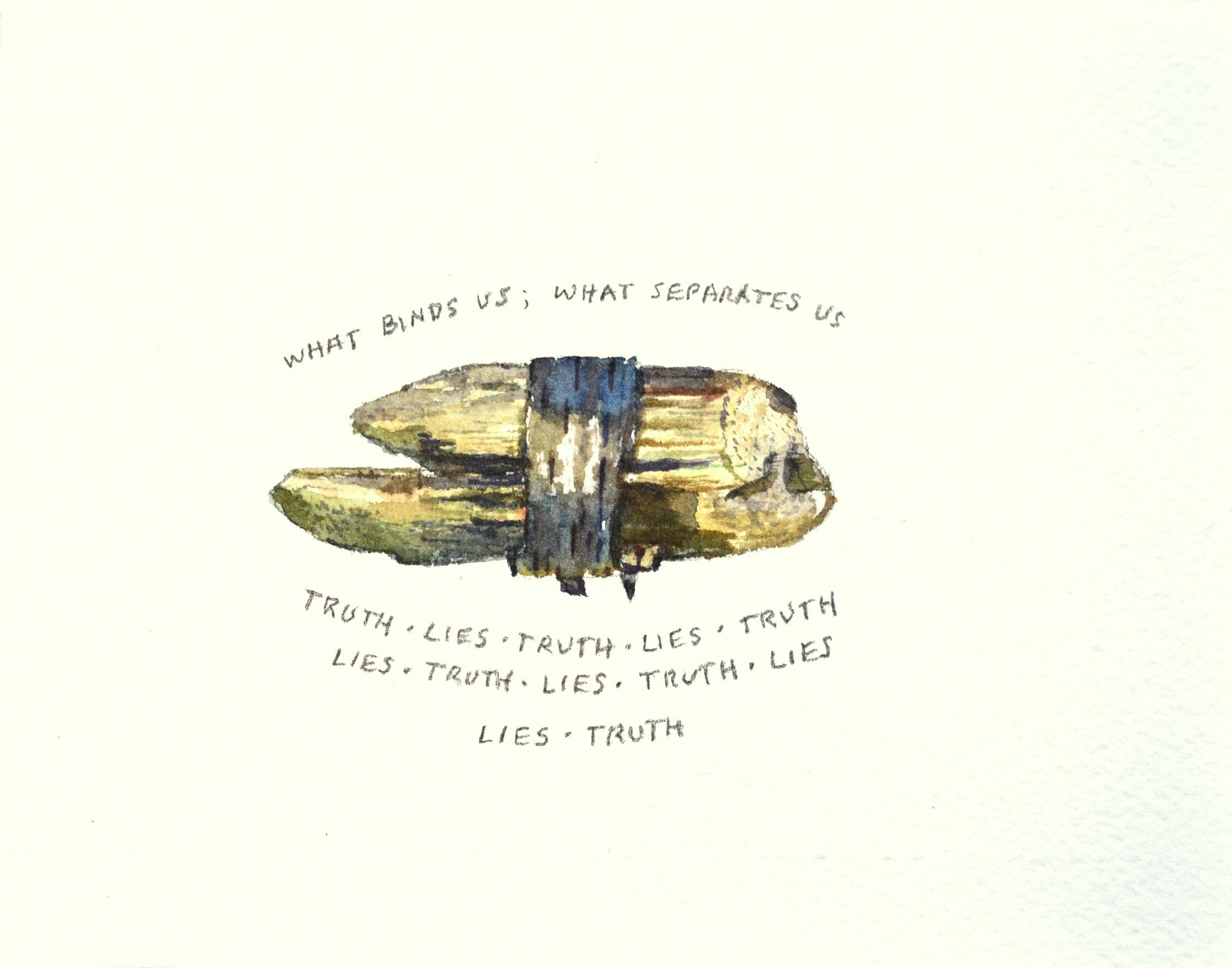 S. Sutro, Truth, Lies ,  watercolor+pencil, 13x17 (framed),  2017.jpg