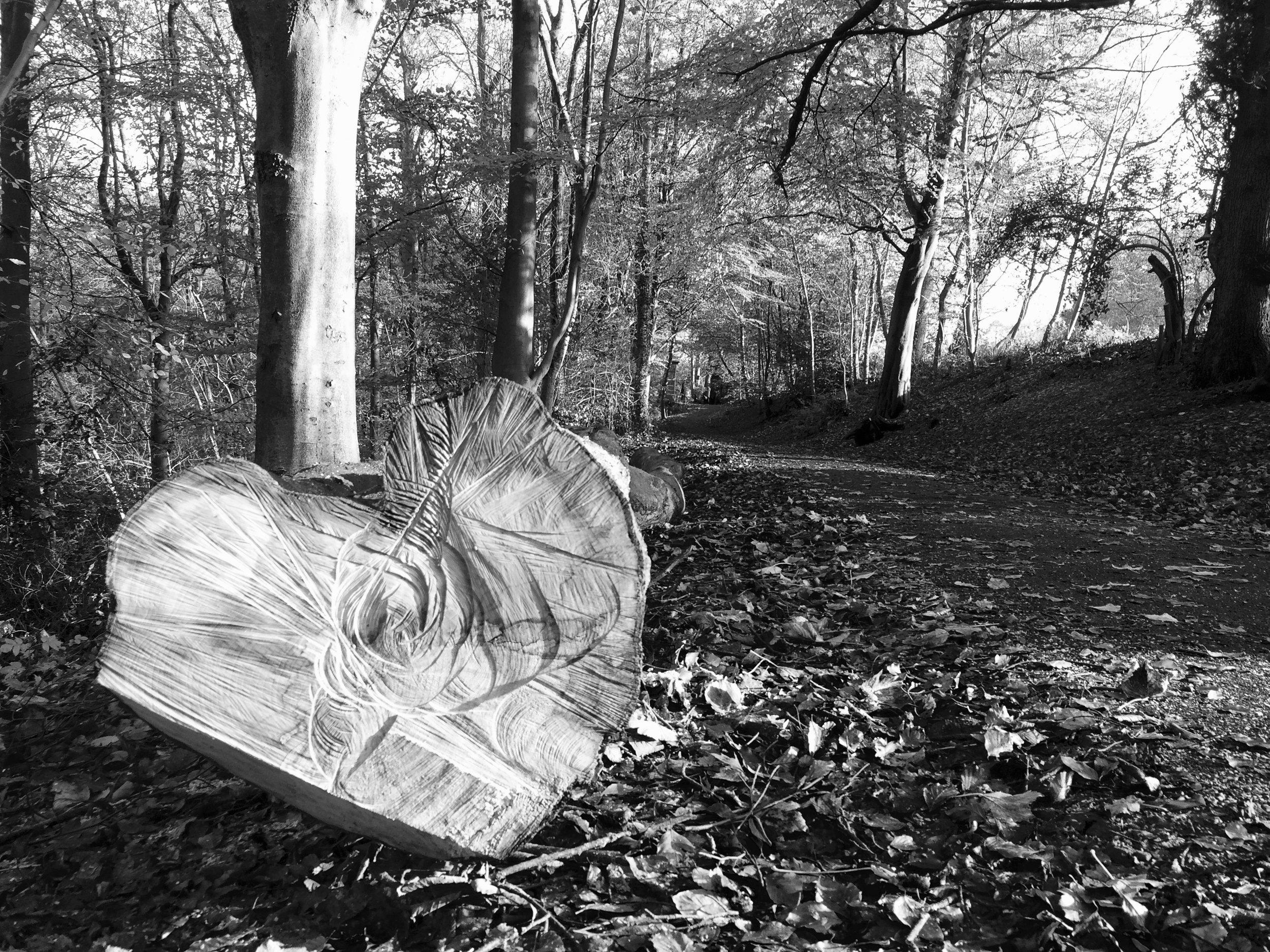 woodland heart