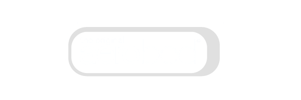 Aerobed.png