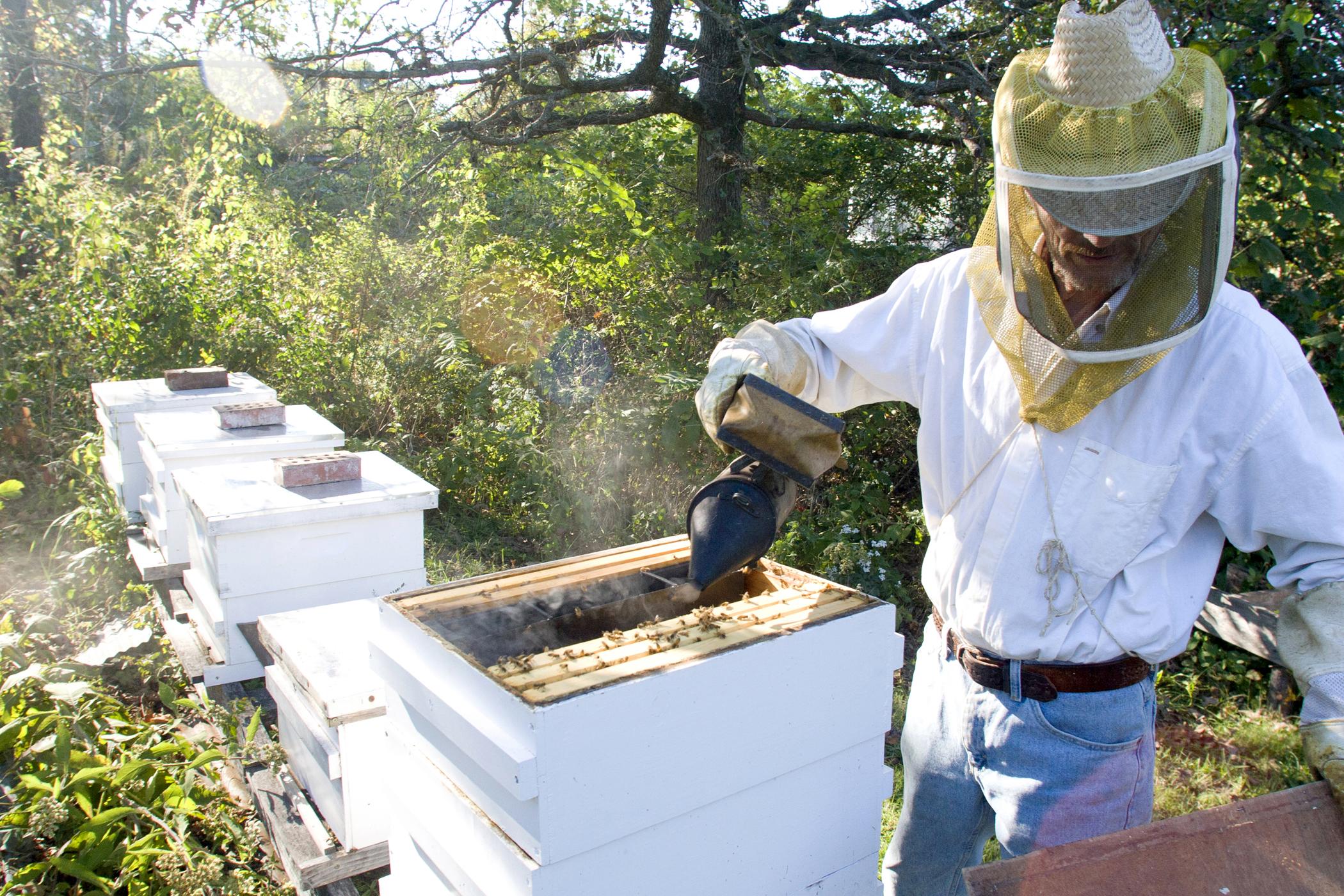 Farm photography beekeeper missouri