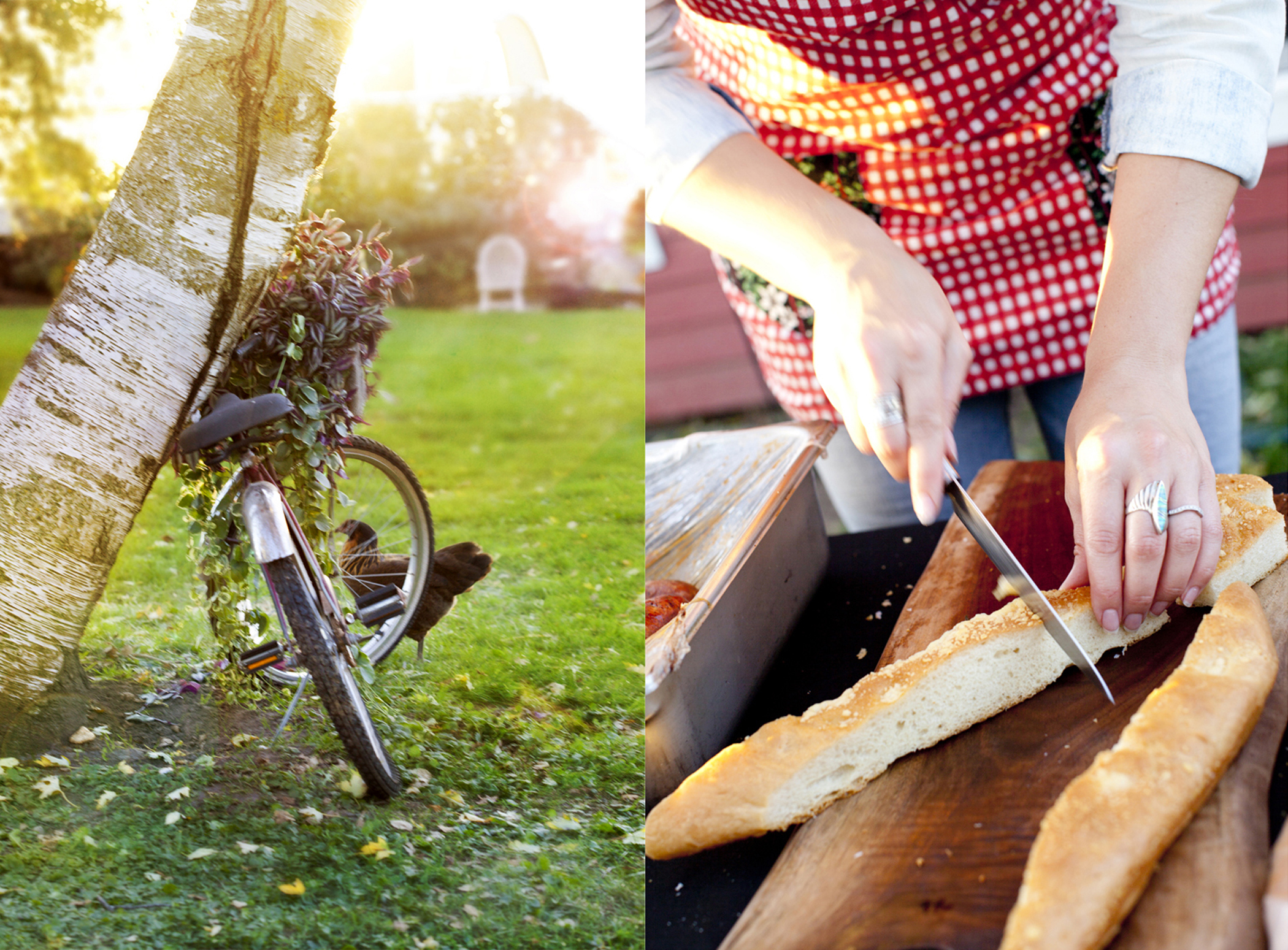 farm to table editorial photography of bread bike