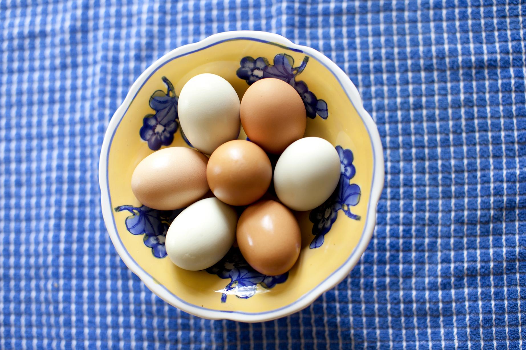 food photography farm free range eggs