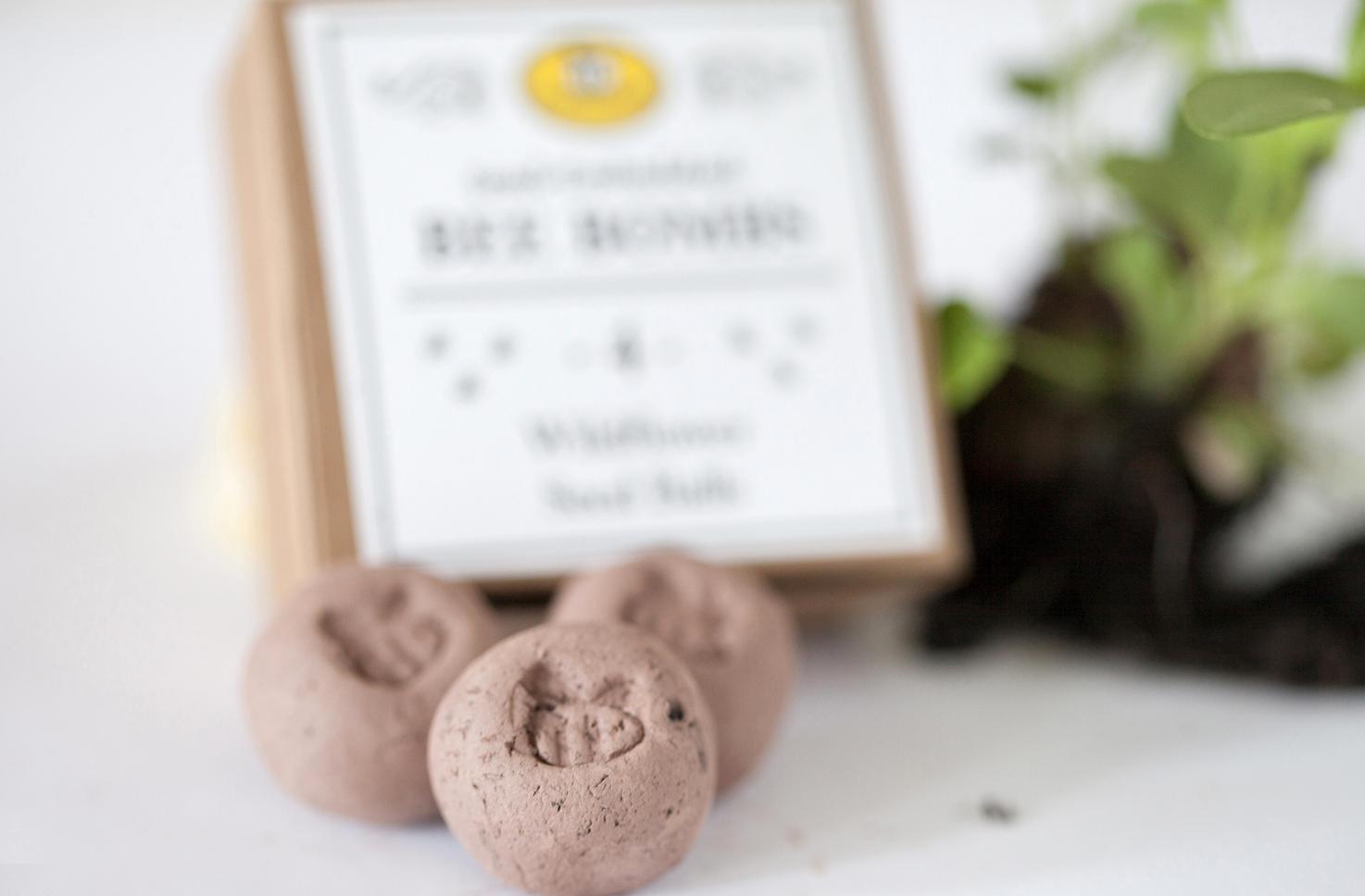 seed ball, bee bomb, plantables