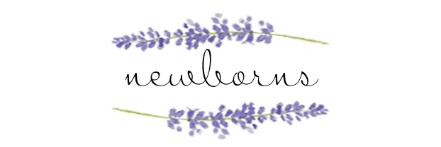 newborn title lavender.jpg
