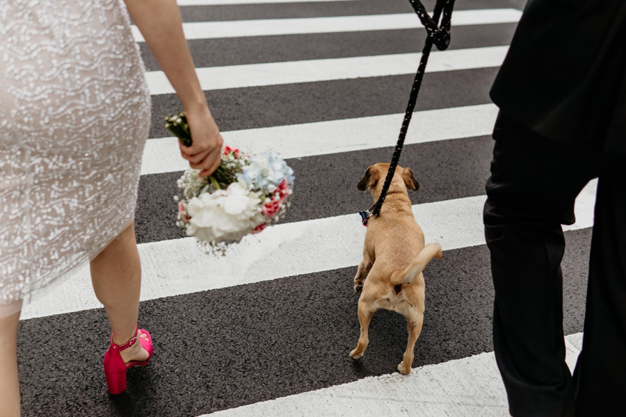Sascha&Yeshaya_NYC_Manhattan_Elopement_Photography-June 09, 2018-73_blog.jpg