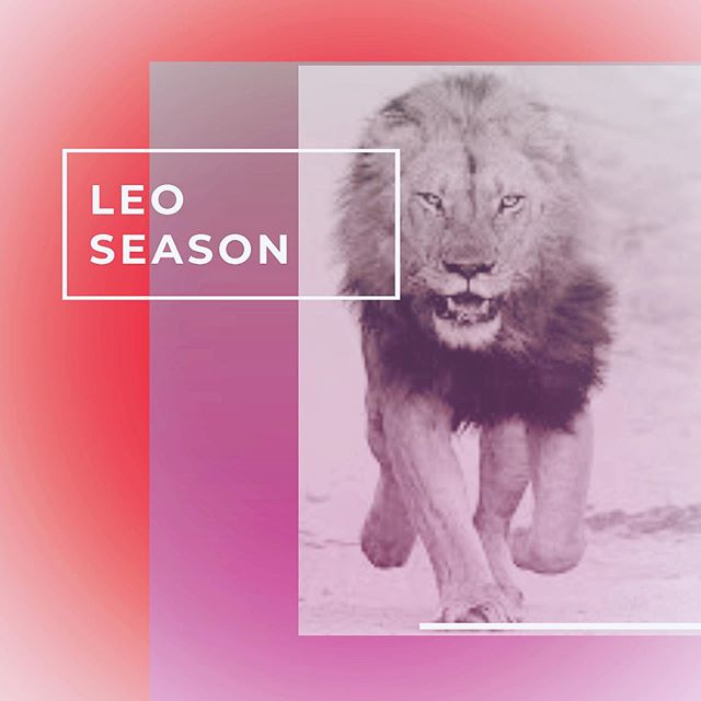 Welcome to Leo Season ♌️🔥 This fire sign is about being bold, taking charge and having the courage to be authentically you. This sign is associated with the third chakra, the solar plexus, where our centre of self resides. In the next four weeks, the energy will be about creativity, self-expression and taking action. This energy can also bring about drama, scandals coming to light and egos at an all-time high. So harness this energy to do you, but make sure to mind your business while you're at it.