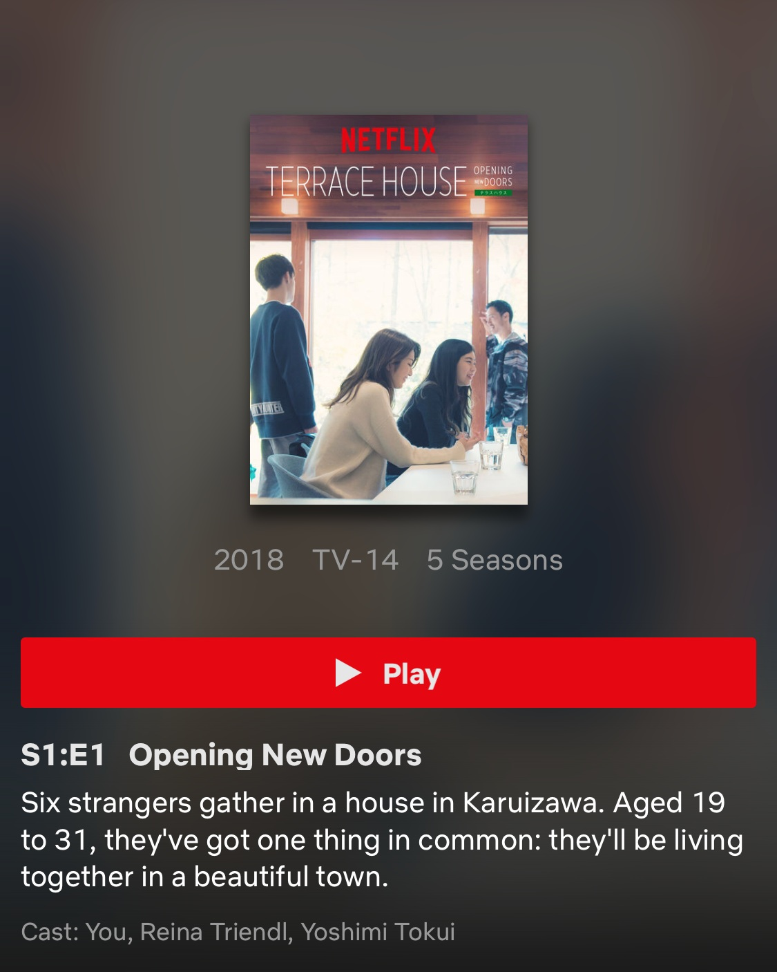 - I included this in my Summer Faves, but this FOR SURE needs to be included in my year fave. Opening New Doors is by far the best season of Terrace house. Shion and Tsubasa… Gah.. Taka.. Shohei.. So good.. Definitely recommend you watch this show lolll.